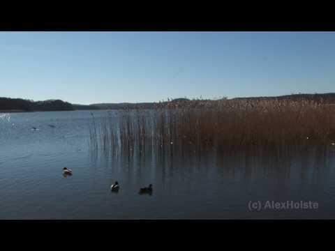 Rügen - Binz Schmachter See (HD Video)