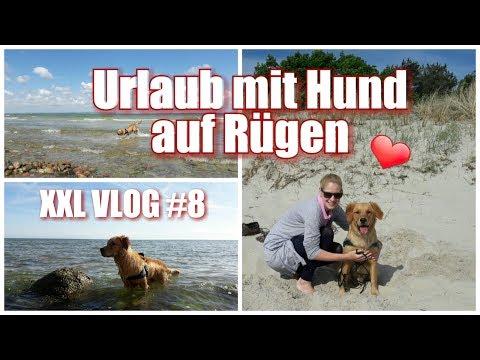 XXL VLOG #8 / Urlaub mit Hund auf Rügen