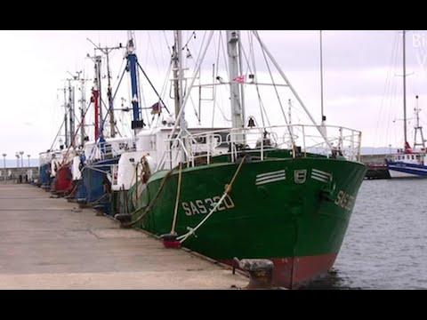 Insel Rügen - Hafen Sassnitz