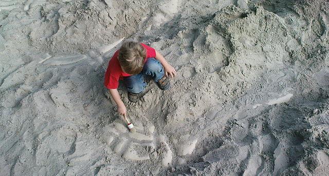 Ausgrabungen für die Kleinen im Dinosaurierland Rügen