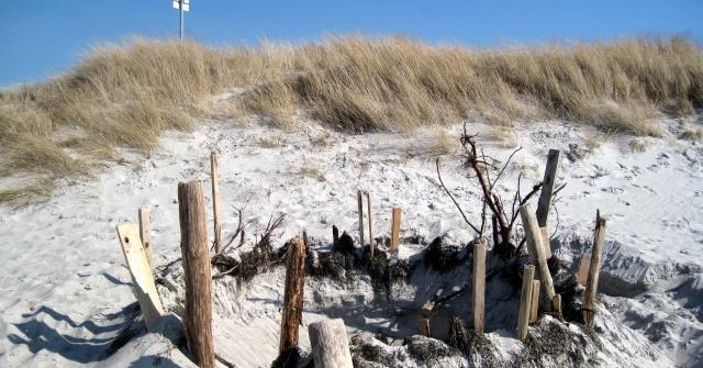 Rügen im Mai – Eine Landschaft startet durch