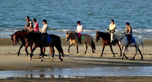 Reiten auf Rügen am Strand